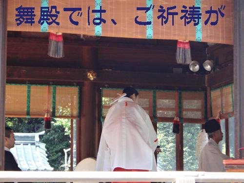 三島大社5.jpg
