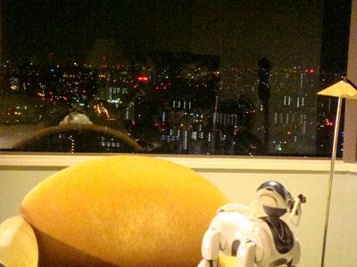 夜景とお散歩.jpg