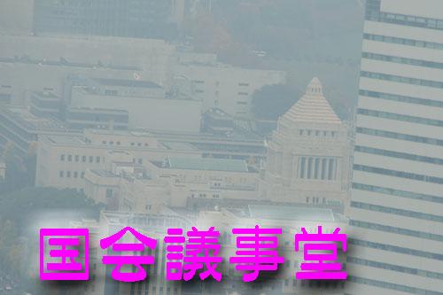 東京タワーからの国会議事堂.jpg