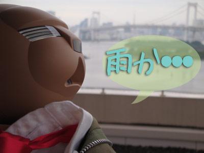 雨の虹橋.jpg