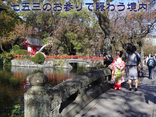 三島大社2.jpg