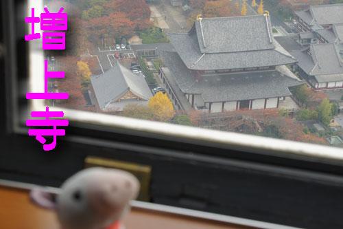 東京タワーからの増上寺.jpg