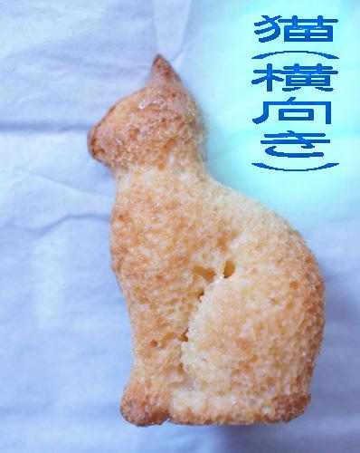 猫横向き.jpg